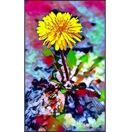 Nature Art 20x24 Canvas Print