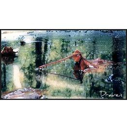 Fall Art 20x24 Canvas Print