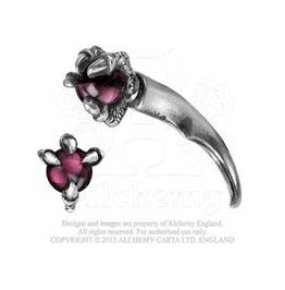 Dragon Claw Or Femur Bone