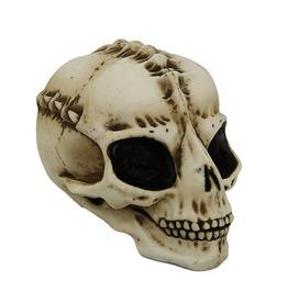 Me10658 Myth Alien Skull