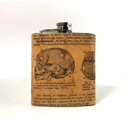 Vintage Anatomy Flask : Skull Of Newborn