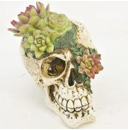 Resin Floral Skull Ornament 17cm