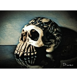 Wicked Skull Art Photography 20x24 Canvas Print