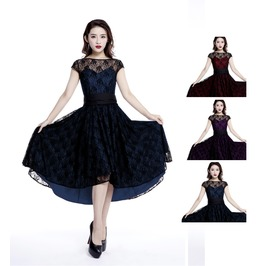 Vintage Sheer Lace Pin Up Dress