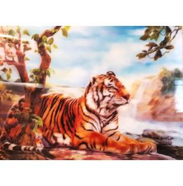 Cool Tiger 3 D Print Design Hard Plastic Picture A3 Size