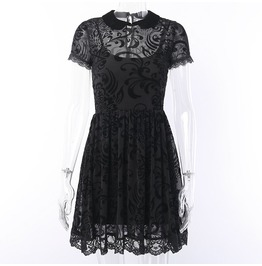 Black Vintage Style Lace Mesh Gothic Dress Fit and Flare