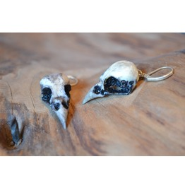 Sparrow Skull Earrings