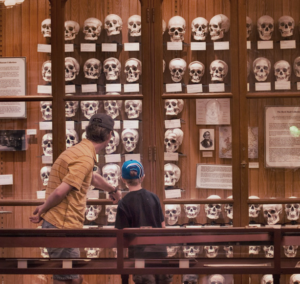 13 Weirdest Places to Visit in the US: The Mutter Museum, Philadelphia