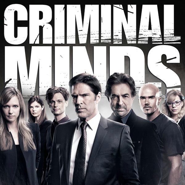 The Best Shows to Binge Watch On Netflix This Summer: Criminal Minds