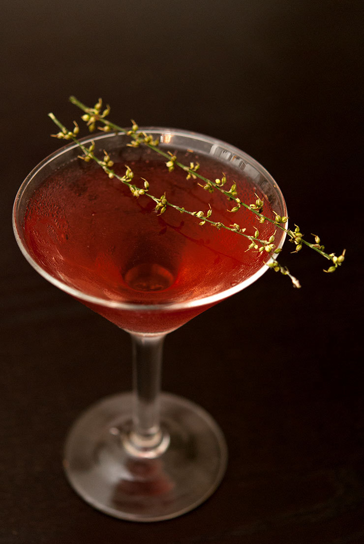 Alternative Thanksgiving Cocktails: The Morticia Addams Cocktail